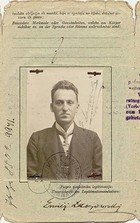 Zapisci Emilija Laszowskog 1914–1918.