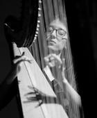 Harfa u Matici