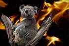 Australski poučak o požarima i životinjama